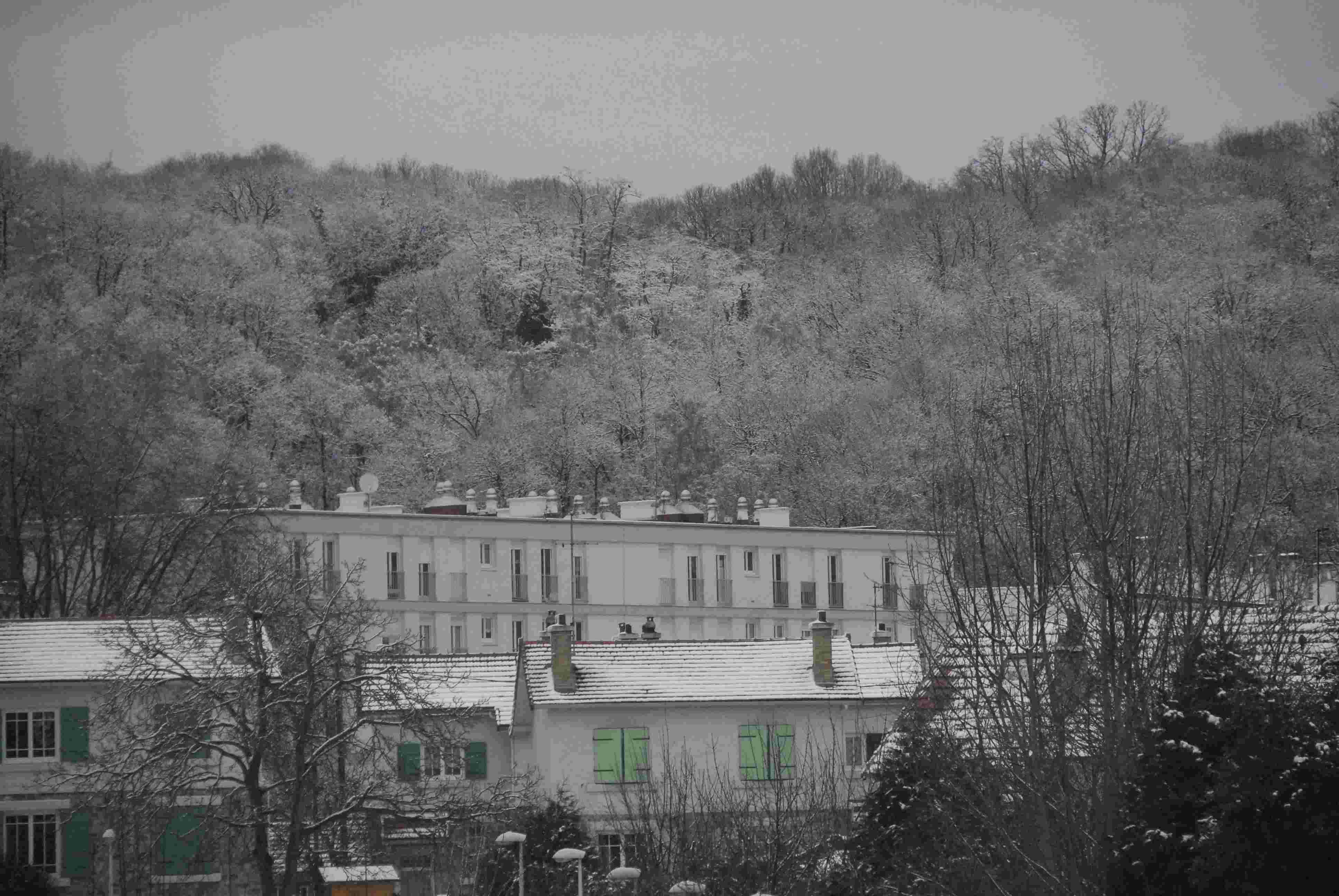 Chateau de versailles for Agence paysage versailles